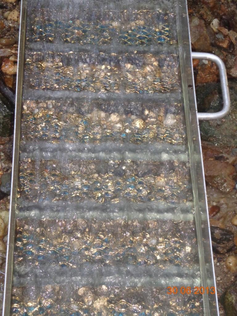 Goldwaschen_Moldanubikum_Anatektische Gesteine3a_Torsten Marx