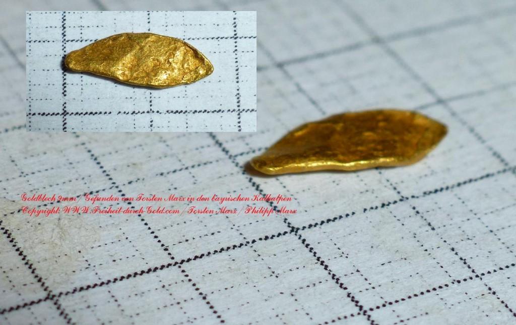 9mm Goldblech_KalkAlpen2014_Torsten Marx