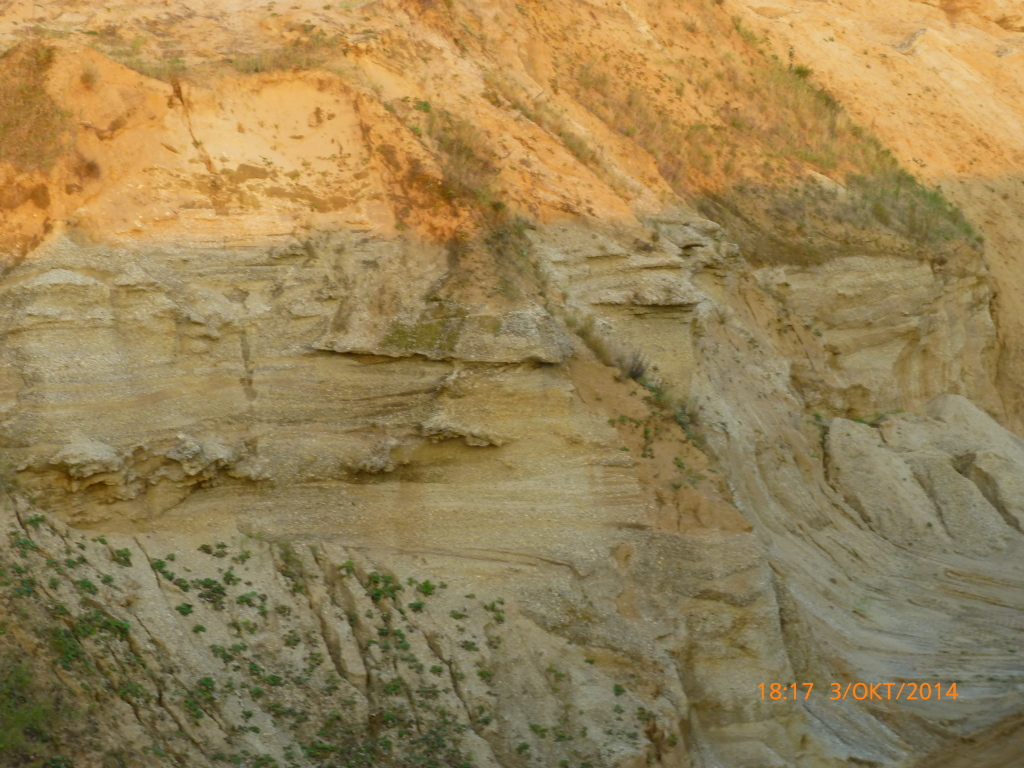 Miozän2_Torsten Marx