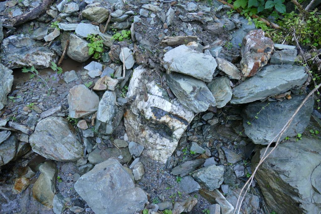 Prospektion Alpen August 2015 (2) - Torsten Marx