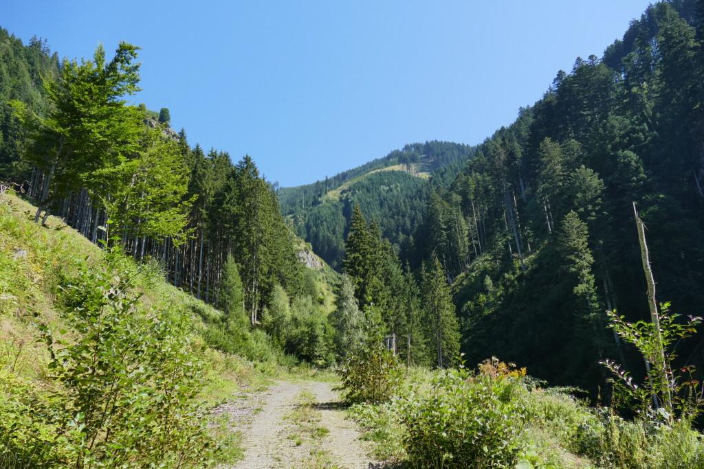 Prospektion Alpen August 2015 (4) - Torsten Marx