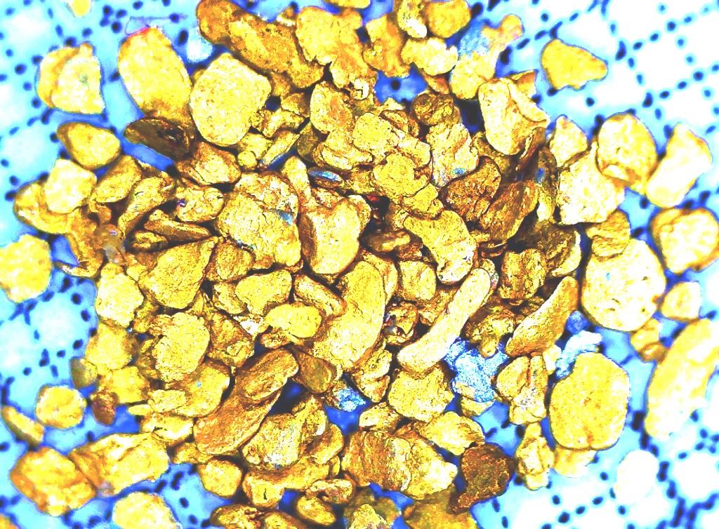 Goldprospektion-Nov15(2.2)-Tobias-Glitzner-1024x754
